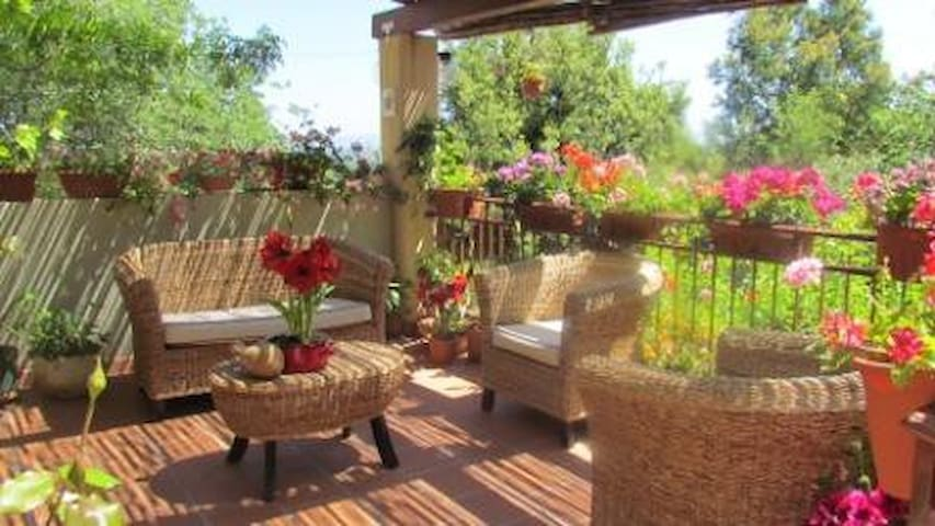 B&B Nonna Lelletta - Lanusei - Bed & Breakfast