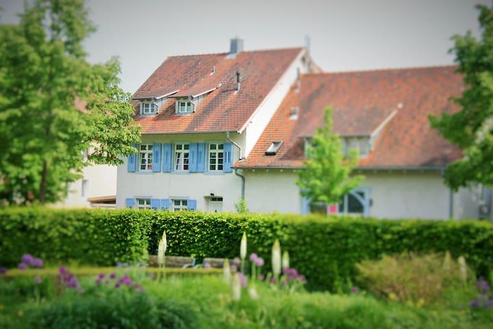 Stadtgartenoase - Singen (Hohentwiel)