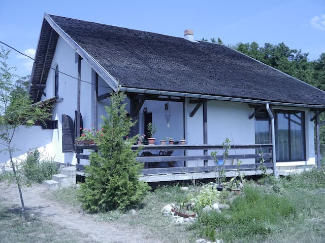 Authentic Countryside Romanian Home
