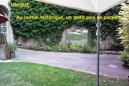 Centre historique, coin de paradis. - Dijon - Wohnung