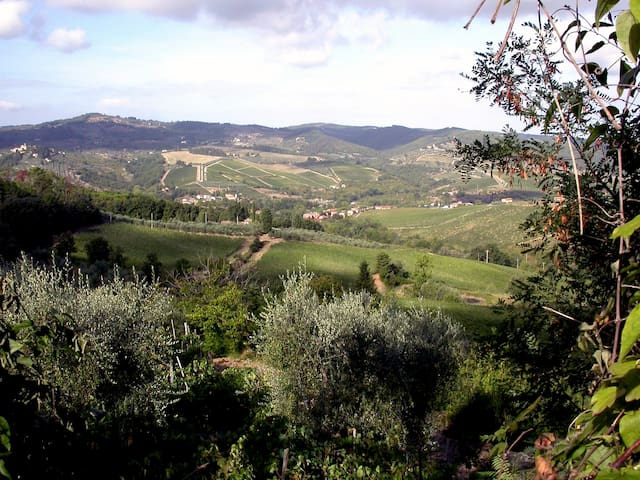 Leonardo with an astonishing view - Greve in Chianti - Cabane