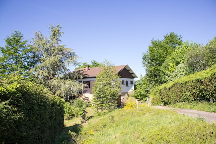 Charming chalet with amazing view near Gerardmer - Le Grand Valtin - Chalet