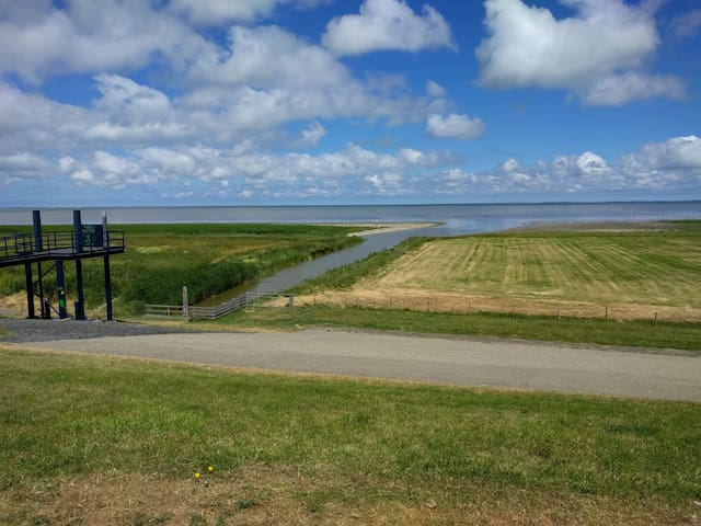 B&B 't  Wad, Friesland , Het Wad, nature & city's