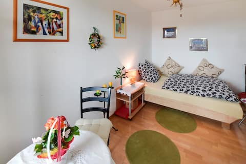 Beautiful bright room, 8th Floor (with lift)