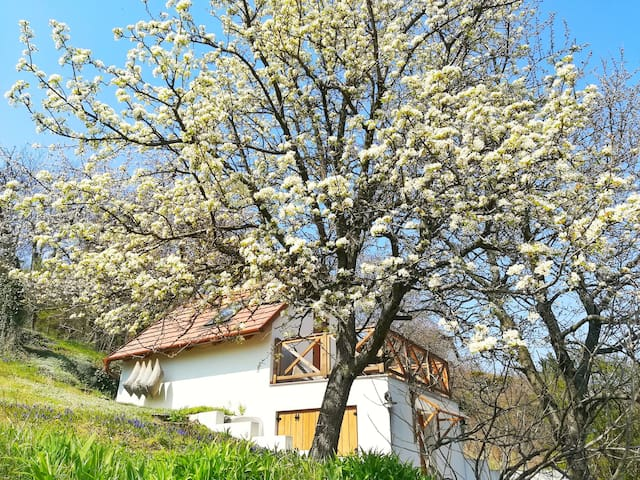 Chill'Inn Country Home in the Balaton Uplands