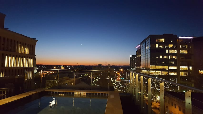 Downtown City Apartment with City Views - Greenville - Appartement
