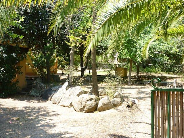 giardino ampio, ombreggiato e recintato