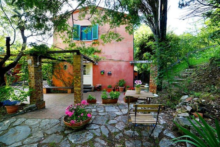 villa indipendente nel bosco - Nugola vecchia ,Collesalvetti - Villa
