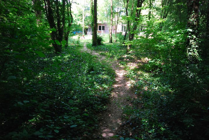 Maison en bois, jardin arboré, chat - Chaumot - Casa cueva