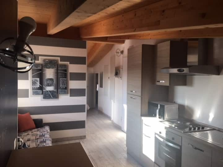 Very large studio with exposed beams (app 24)