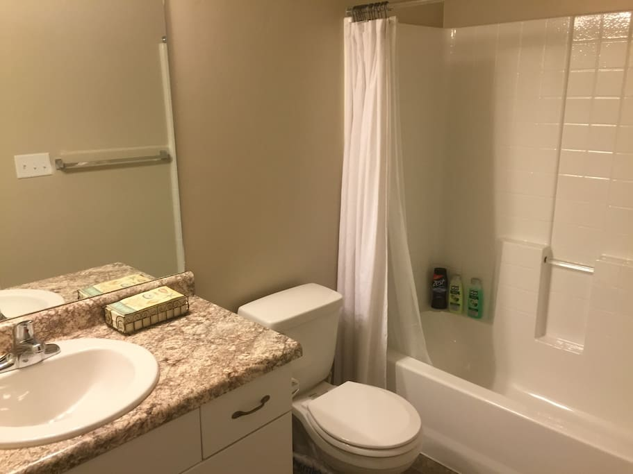 This is the guest bathroom located right next to the guest bedroom.