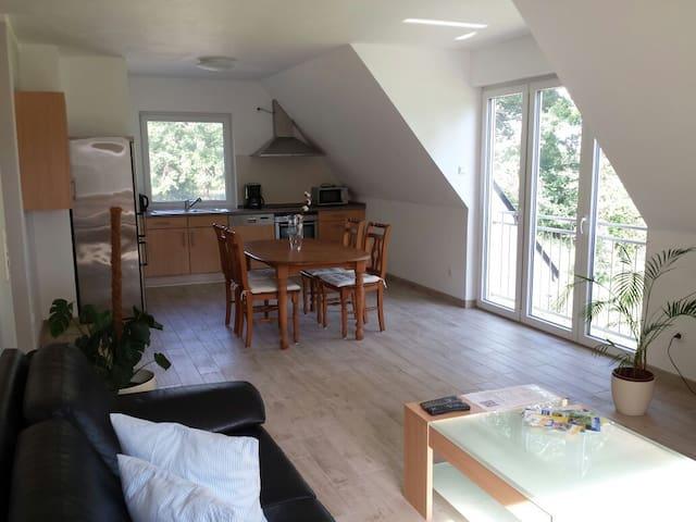 Neu renovierte Wohnung im Grünen - Paderborn - Apartament