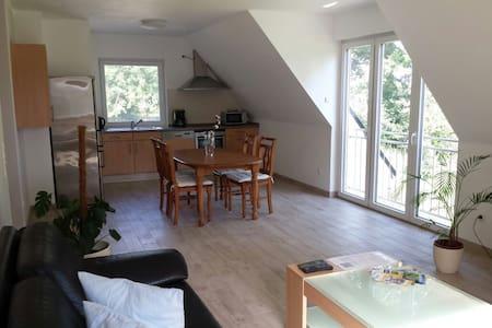 Neu renovierte Wohnung im Grünen - Paderborn - Flat
