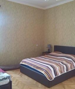Sunny & Comfortable House in Telavi - Telavi