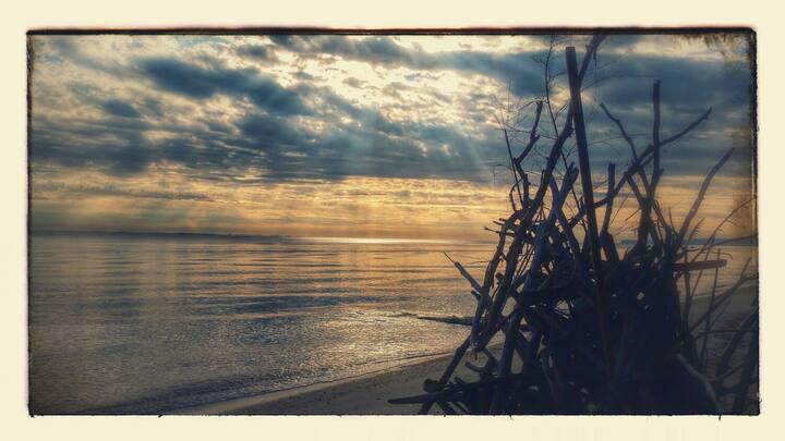 Scientists Cliffs Fossil Beach House Sleeps 12