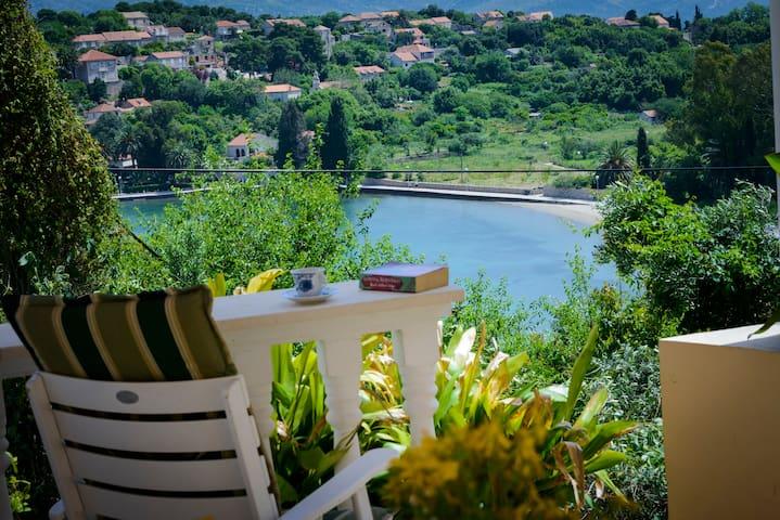 Apartment Oreb 1 - Dubrovnik - Apartment