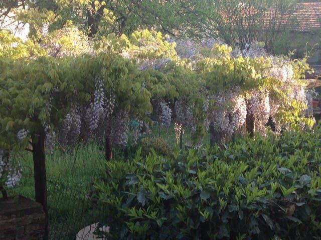 Casa e giardino a Pontremoli - Pontremoli - Osakehuoneisto