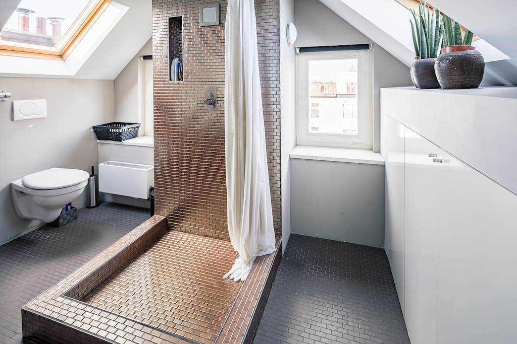 the bathroom, with second toilet