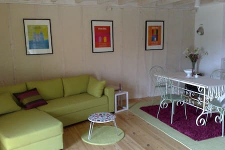 Charming apartment-Le Puy en Velay - Apartment