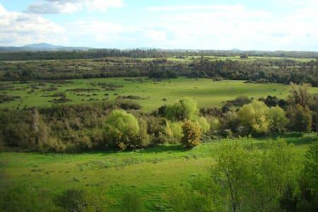 Cabañas para arriendo en el campo - Lomas de Putagon