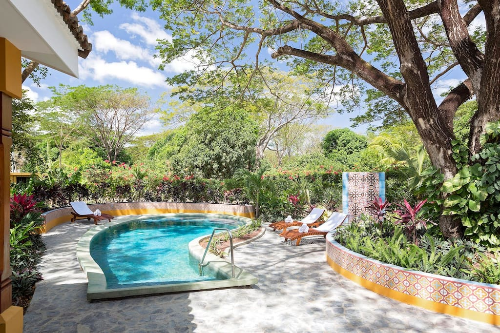 Brand new pool with chase loungers, shared BBQ/grill and outdoor shower for after surf