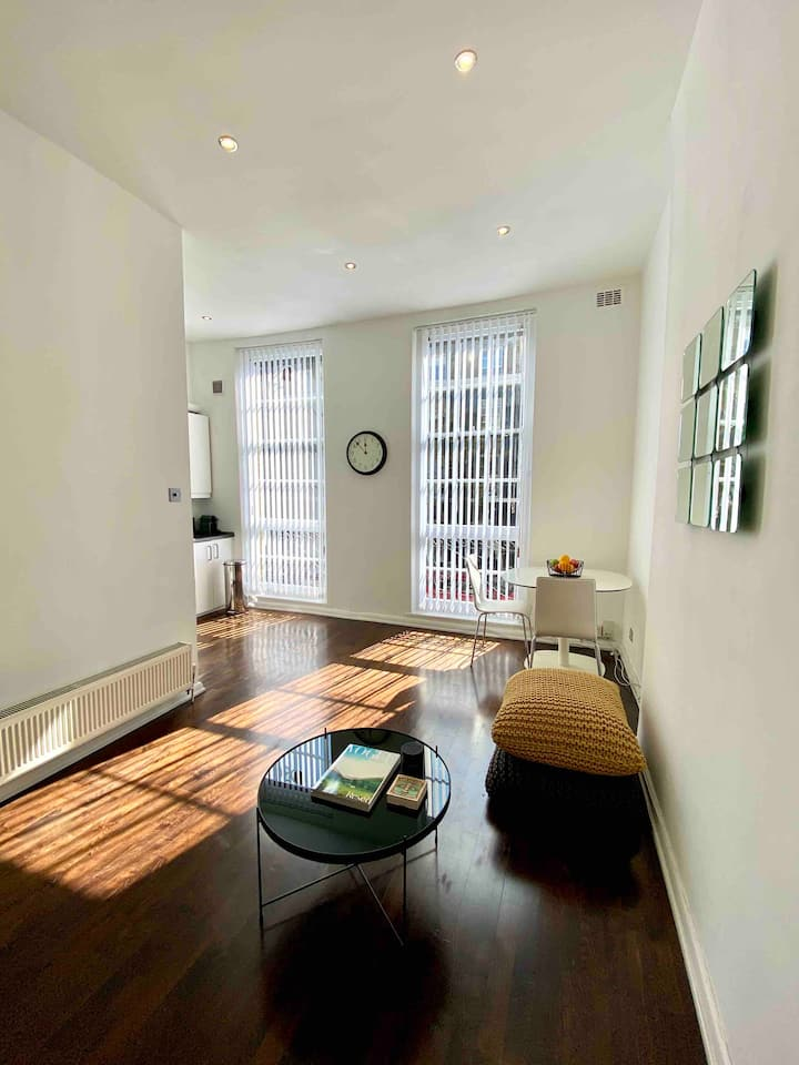 Stunning apartment in central London