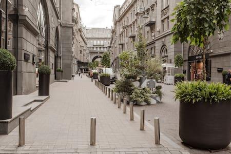 Просторные апартаменты в Пассаже на Крещатике