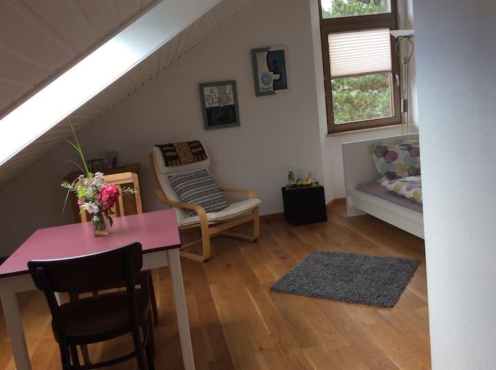 Stilvolles Zimmer nahe Basel