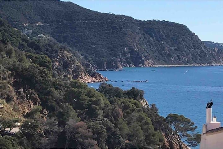 Duplex with panoramic views in Cala Salions, Tossa