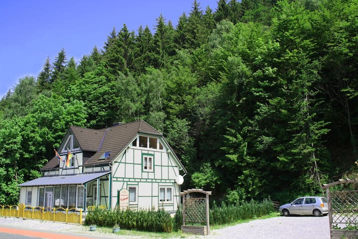 Deluxe Holiday Home in Brilon-Wald near Ski Area
