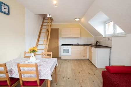 Apartment Daša