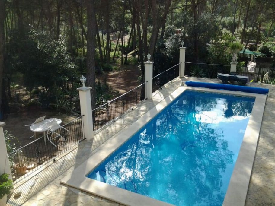 Swimming pool and outside garden