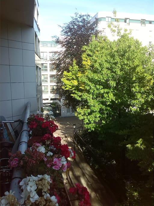 Grand balcon donnant sur le jardin public