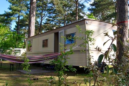 Pleasant mobile home in the dunes - Castricum