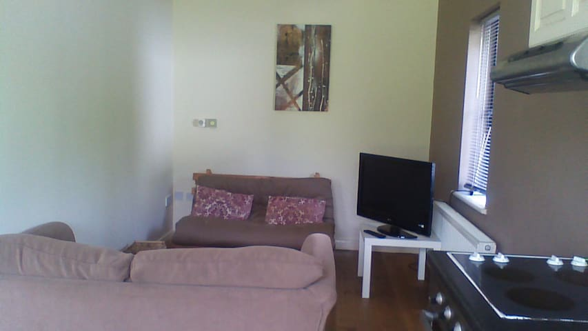 one bedroom apartment - Glasson, Athlone - Dom