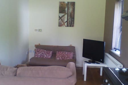 one bedroom apartment - Casa