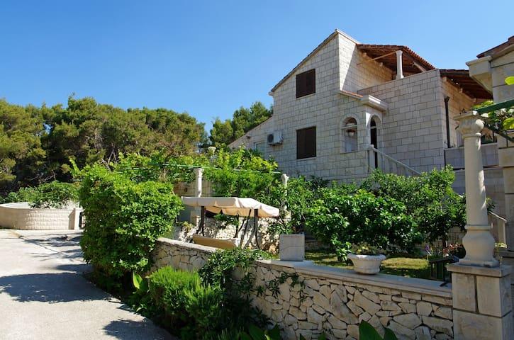 Villa Punta in Sumartin island Brac - Sumartin - Apartmen