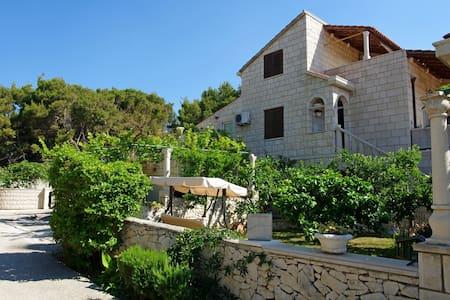 Villa Punta in Sumartin island Brac - Sumartin