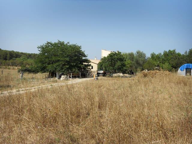 Rustic Farm in Majorca´s heart - Sant Joan - ที่พักพร้อมอาหารเช้า