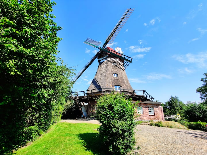 Windmühle Lindaumühlenholz