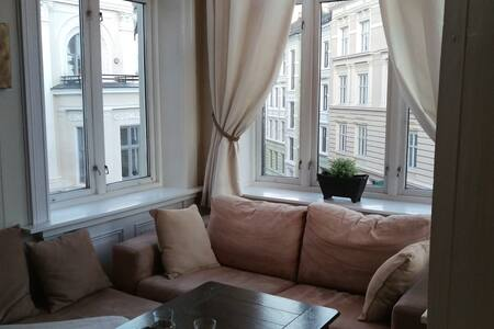 Central and spacious apartment - Oslo - Wohnung
