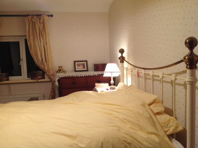 Double Room in lovely, cosy and central townhouse - Galway