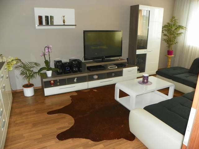 One room for rent in a 2-room apt. - Bratislava