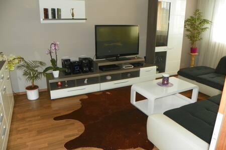 One room for rent in a 2-room apt. - Bratysława - Apartament