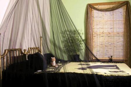 The Goddess Bast Room (Cat Goddess of Pleasure)
