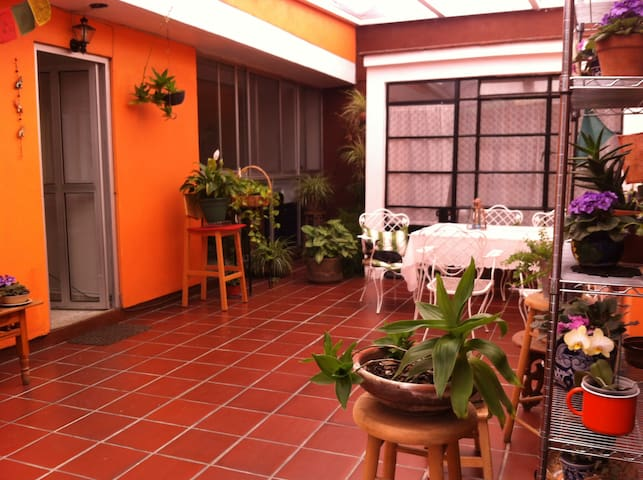 Near UNAM: in the heart of Coyoacan Room A