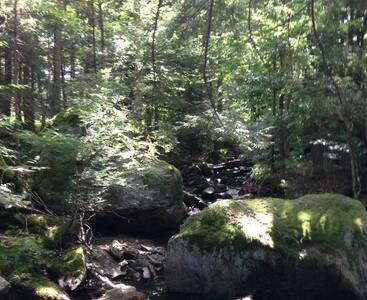 Southern Vermont Streamside Retreat - Readsboro