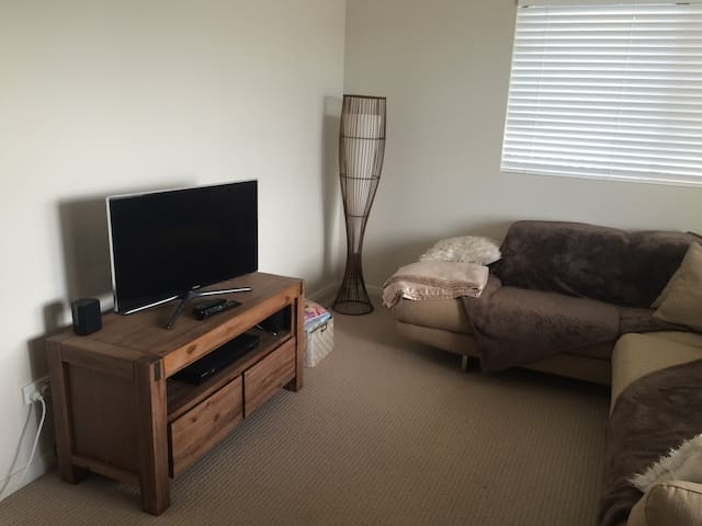 Large bedroom avail in apartment - Everton Park - Apartment