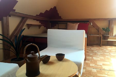 Spacious attic room close to the city centre - Olomouc