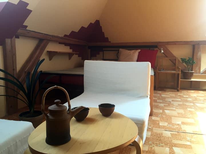 Spacious attic room close to the city centre